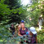 Rośliny lecznicze Cergowej (716 m n.p.m.) – zajęcia terenowe, 17 sierpnia 2018 r., Dukla —> góra Cergowa, godzina 9:00.
