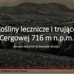 """Prezentacja z wykładu """"Rośliny lecznicze i trujące Cergowej 716 m n.p.m."""", PWSZ im. S. Pigonia, Krosno, 18 sierpnia 2018 r."""