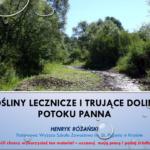 Wybrane rośliny lecznicze i trujące doliny potoku Panna, 2017 r. – prezentacja.