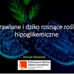 Uprawiane i dziko rosnące rośliny hipoglikemiczne – obiecana prezentacja przedstawiona podczas wykładu na  IV Sympozjum Zielarskim oraz II Targach Zielarskich i Fitoterapeutycznych zorganizowanych przez Polską Grupę Zielarską oraz Polską Izbę Zielarsko-Medyczną w dniach 28-29 września 2019 r., w Kielcach.